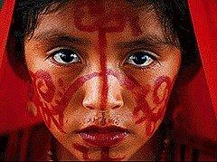 La naturaleza y su importancia para los pueblos originarios